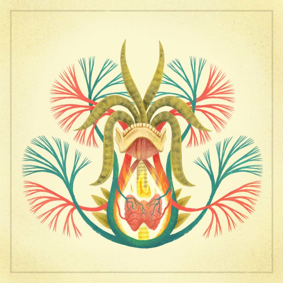 Thyroid - Art Print by Dunaway Smith