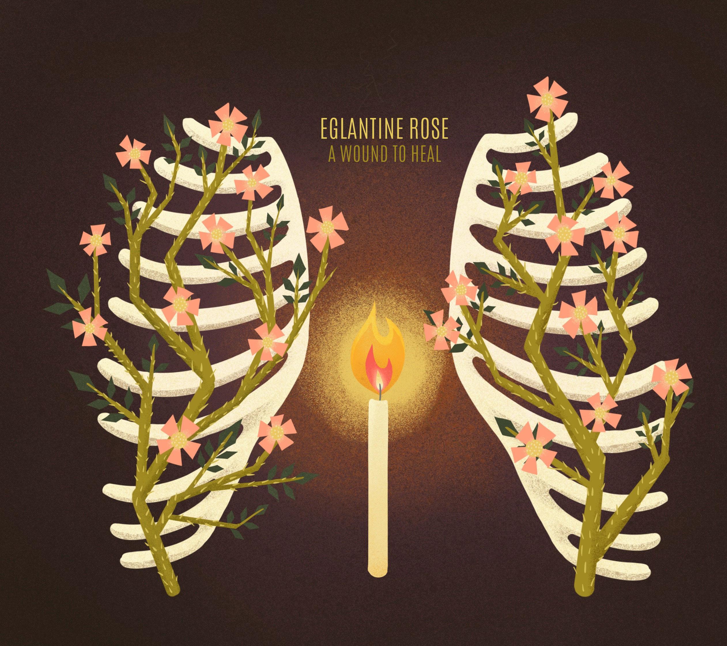 Eglantine Roses